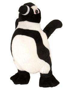 "12"" African Penguin"