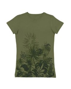 Organic Ladies Short Sleeve Scoop Neck